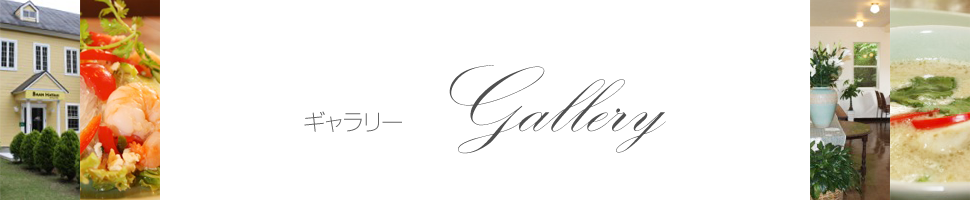 ギャラリー~Gallery~