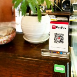 【 PayPay & LINE Pay📱 】